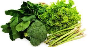 sayur hijau